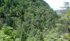 وزارة البيئة تذكّر بفتح ابواب المحميات الطبيعية مجاناً يوم غد