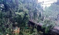 العاصفة خلفت أضرارا في الحدت وبعبدا واللويزة والمتن الأعلى