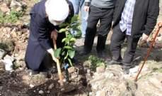 بلدية جبشيت غرست حوالي 350 شجرة مثمرة وحرجية بحمية شهداء المقاومة