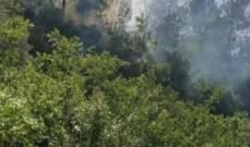 إخماد حريق شب في حرج من الأشجار في بيت الفقس وحريقي أعشاب آخرين في رياق وقب الياس