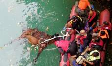 الدفاع المدني: سحب حصان نافق من سد شوان- كسروان