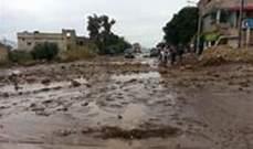 إنقاذ 25 شخصا بينهم أطفال من أصل 44 شخصا جرفتهم السيول بالأردن