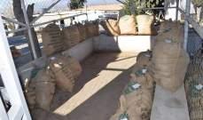 الجيش: مداهمة في دورس وتوقيف مطلوبَين لقيامهما بالإتجار بالمخدرات والأسلحة الحربية