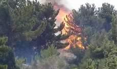 الدفاع المدني يواصل العمل على اخماد الحريق المندلع في محمية جبل موسى