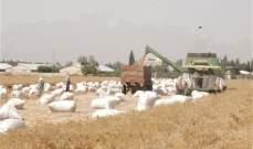 مزارعو القمح: لضم المؤسسات الزراعية وكل ما يتعلق بها لقرار الإعفاءات