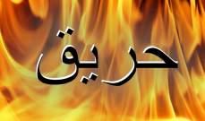 رئيس بلدية الغزيلة العكارية ناشد المعنيين الإسراع بإخماد حريق في بساتين زيتون