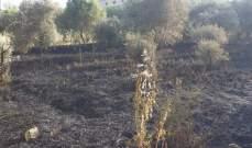 الدفاع المدني: إخماد حريق شب في أعشاب يابسة في ميس الجبل
