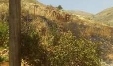 اخماد حريق اعشاب في امول - زحلة وآخر على طريق مرجعيون