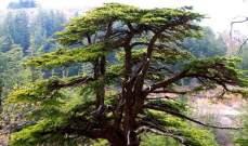 الاتحاد الدولي لحماية الطبيعة يضم 15 موقعا لقائمة أفضل المناطق المحمية بالعالم