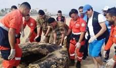 وحدات من الجيش شاركت في عملية تنظيف الشاطىء اللبناني