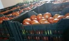 ضبط أطنان من البندورة المهربة في سوق قب الياس فجر اليوم