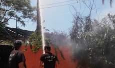 النشرة: اخماد حريق بستان اشجار في زاروب حشيشو في صيدا