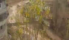 سيول في بلدة الفاكهة مصدرها السلسلة الشرقية