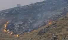 الدفاع المدني: إخماد 3 حرائق أعشاب وأشجار في صور ودرعون والنمورة