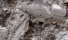 """اكتشافان في موقع """"الفرير"""" في صيدا: تحصينات دفاعية..."""