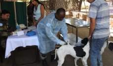 الكتيبة الهندية في اليونيفيل نظمت حملة تطعيم للحيوانات الأليفة في سوق الخان