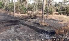 النشرة: إطفائية صيدا تخمد حريق نخل وهشير قرب حاجز الجيش على الأولي
