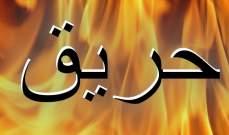 إخماد حريق أعشاب يابسة وأشجار زيتون في رشعين وحريق أعشاب يابسة في غادير