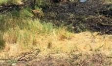 الدفاع المدني: إخماد حريق شب في أعشاب في قب الياس