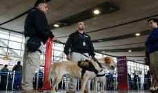 إعتقال شخصين بعد ورود بلاغات كاذبة بوجود قنابل على متن طائرات تشيلية