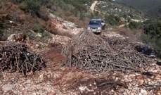 قوى الأمن: توقيف 3 أشخاص في رشكيدا لقطعهم أشجار سنديان بهدف تصنيع الفحم دون ترخيص