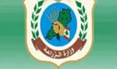 وزارة الزراعة: الآفات في أحراج السنديان والبلوط سببها عثة غجرية
