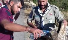 """""""كشاف البيئة"""" استنكرت المجازر بحق الطيور المهاجرة: للتصدي لها وتطبيق القانون"""