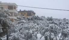 الرياح القوية مزقت بيوتا بلاستيكية في عكار وألحقت أضرارا بالمزروعات