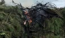 بلدية الجية نفت حرقها للنفايات: مجهول حرق بقايا أشجار على الشاطىء وأخمدناها فورا
