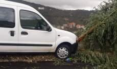 النشرة: انزلاق سيارة بسبب الأمطار على طريق عام حاصبيا واصطدامها بشجرة