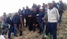 بلدية القاع نظمت حملة تشجير لأغراس اللزاب في تلة الصليب بمناسبة عيد الإستقلال