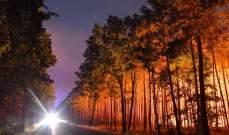 اخلاء 3 قرى جنوب غرب المانيا إثر اندلاع حريق بالغابات