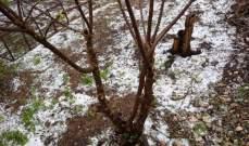 النشرة: تساقط الثلوج في مدينة النبطية