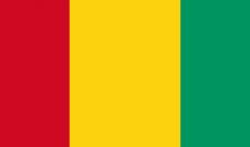 أ ف ب: مقتل 15 شخصاً على الأقل بانهيار أرضي في منجم للذهب في غينيا