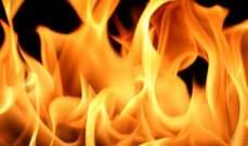 النشرة: حريق كبير عند مثلث دير القليعة- دير ميماس التهم مساحات من كروم الزيتون