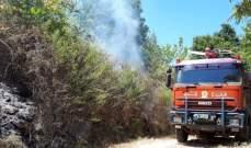 الدفاع المدني: اخماد حريق أعشاب في بيت الدين - الشوف
