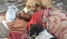 كلاب تمكث بجانب صاحبها المشرد بعد وفاته