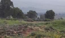 النشرة: دورية اسرائيلية حاولت اختطاف راع يرعى قطيعه في منطقة بسترة