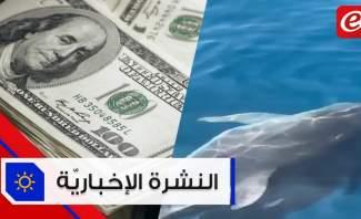 موجز الأخبار: ضخ الدولار عبر المصارف يبدأ الأسبوع المقبل ودلافين في بحر لبنان