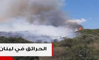 حرائق الصيف تُهدّد ما تبقّى من المساحات الحرجية في لبنان!
