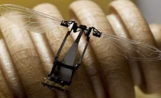 الحشرات قد تحل مكانها الروبوتات النانوية