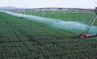 أزمتان تواجهان المزارع البقاعي وتضعان محصوله في خطر الكساد والتلف
