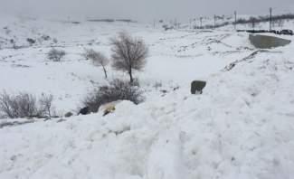 النشرة: تساقط الثلوج من ارتقاع 900 متر وما فوق على بلدات البقاع الغربي
