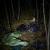 متحدث باسم الشرطة البولندية: العثور على جثة مهاجر سوري على الحدود مع بيلاروسيا