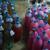 ضبط كمية من مواد التنظيف غير مستوفية الشروط داخل مخيم للنازحين السوريين في زحلة