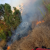 اخماد حريق قصب مقابل حلويات البابا على الاوتوستراد الشرقي لمدينة صيدا
