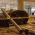 رئيس المكسيك: لا أضرار كبيرة في الزلزال الذي ضرب البلاد