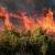 الدفاع المدني أخمد حريقًا في بخعون قضى على مساحة واسعة من الأراضي الزراعية