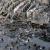 الصحة الفلسطينية: ارتفاع عدد القتلى في غزة إلى 27 بعد انتشال جثتين