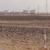 الجيش الليبي يسيطر على حفل الفيل جنوب غرب ليبيا